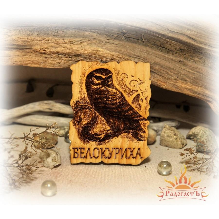 Магнит-сувенир «Белокуриха» с совой
