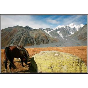 Поклон Южным склонам Белухи