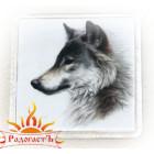 Магнит «Волк 3»