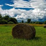Народные приметы о погоде на август месяц (Серпень)