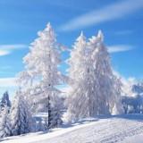 Народные приметы на погоду в январе месяце (Сечень)