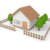 Какие деревья нельзя сажать в ограде дома?