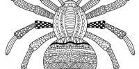 Славянский календарь: что готовит нам 7528 лето?