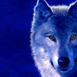 Тотем волка в славянском язычестве