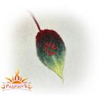 Подвеска «Символ плодородия»