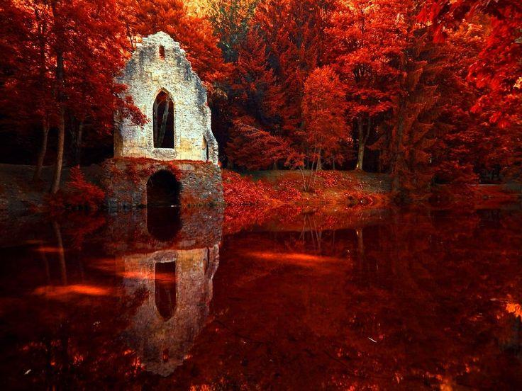 Красный в природе