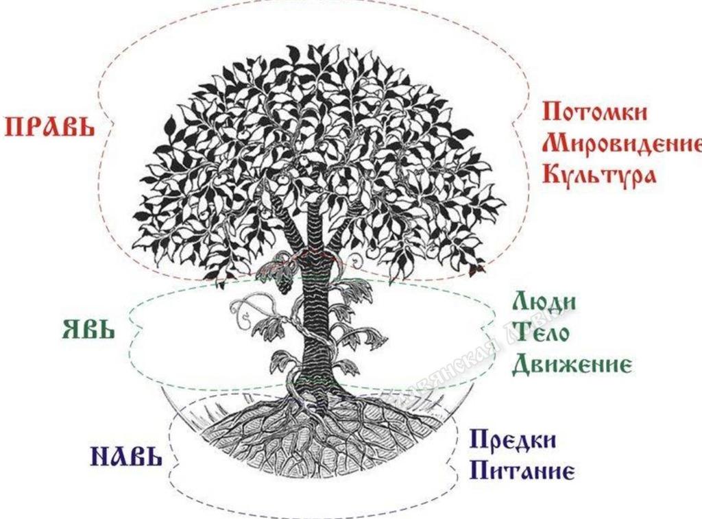 Гармония явь навь и правь символ славянский